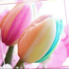 LiPPS_flower